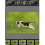 Daftar Aplikasi Membuat Foto Melayang (Levitasi) di Hp Android